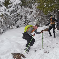Сезон скайраннинга открылся на Борусе